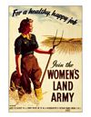 WOMENS LAND ARMY PAP
