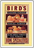 BIRDS CUSTARD FRIDGE MAGNET