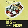 Single Coaster - Dig For Victory